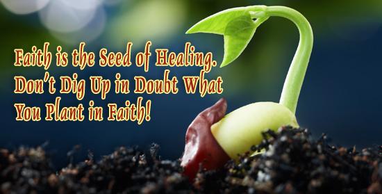 Seed Launching Pad >> Launching Pads